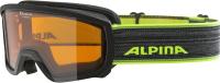 Маска горнолыжная Alpina Sports 2020-21 Scarabeo Jr. DH / A72581-32 (черный/неоновый) -