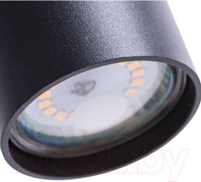 Потолочный светильник Arte Lamp Canopus A1516SP-1BK