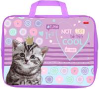 Папка-портфель Hatber Cool kitty / NSn-80014 -