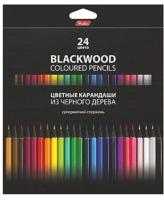 Набор цветных карандашей Hatber Black Diamond / BKc_24830 (24цв) -