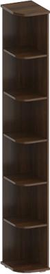 Угловое окончание для шкафа Лером Карина ШК-1052-АТ (акация молдау)