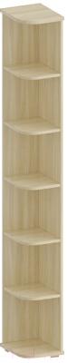 Угловое окончание для шкафа Лером Карина ШК-1052-АС (ясень асахи)