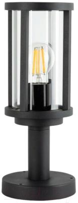 Светильник уличный Arte Lamp Toronto A1036FN-1BK