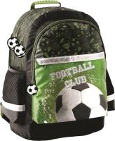 Школьный рюкзак Paso PP20FO-116 -