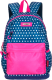 Школьный рюкзак Merlin MR20-147-15 -