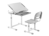 Парта+стул Растущая мебель B201 EDU -