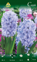Семена цветов АПД Гиацинт Скай Джекет / A30127 (3шт) -