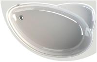 Ванна акриловая Radomir Модерна 160x100 / 2-01-0-2-1-214 -