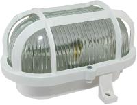 Светильник ЖКХ TDM НБП 02-60-004.03У Евро корпус (защитная сетка, белый) -
