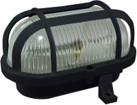 Светильник ЖКХ TDM НБП 02-60-004.03У Евро корпус (защитная сетка, черный) -