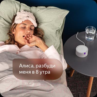 Умная колонка Яндекс Станция Мини + Розетка Яндекс YNDX-0007W (черный)