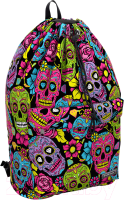 Школьный рюкзак Erich Krause EasyLine 16L Funny Skulls / 46331