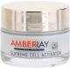Крем для лица Farmona Amberray ночной отбеливающе-восстанавливающий (50мл) -