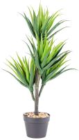 Искусственное растение Home and You 56743-ZIE-STRO-H0100 -