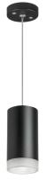 Потолочный светильник Lightstar Rullo RP43730 -