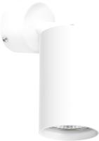 Спот Lightstar Rullo RB436 -