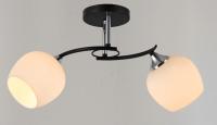 Потолочный светильник Mirastyle SX-0360/2 CH+BK -