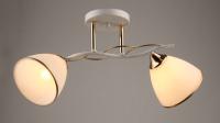 Потолочный светильник Mirastyle SX-0613/2 WT+FG -