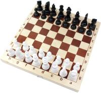Шахматы Десятое королевство Десятое королевство пластмассовые в дер.упаковке / 03878 -