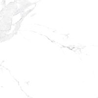 Плитка Allore Avenzo Silver F P R Full Lappato 2 (595x595) -