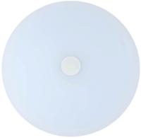 Потолочный светильник De Markt Норден 660012901 -