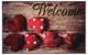 Коврик грязезащитный VORTEX Velur Welcome 50x80 / 24243 -