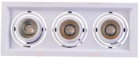 Комплект точечных светильников De Markt Круз 637016303 -