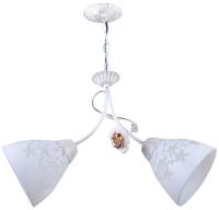 Потолочный светильник HIPER H136-2 -