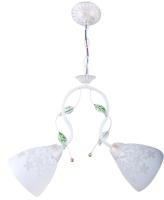 Потолочный светильник HIPER H137-2 -