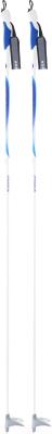 Палки для беговых лыж Nordway 15BLS00013 / 15BLSP-00 (р-р 130, белый)