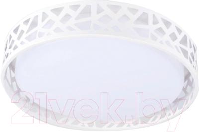 Потолочный светильник HIPER H823-6