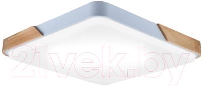 Потолочный светильник HIPER H823-1