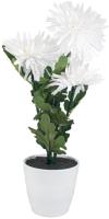 Ночник Старт LED Хризантема3 (белый) -