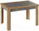 Обеденный стол ТриЯ Хьюстон тип 4 раздвижной (дуб вотан/моод темный) -