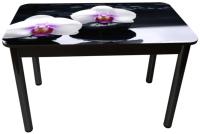 Обеденный стол Solt Рита 1с №149 (кромка черная/царга черная/ноги круглые черные) -