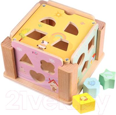 Развивающая игрушка Darvish Сортер. Куб / DV-T-1611