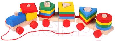 Развивающая игрушка Darvish Сортер. Паровозик / DV-T-2093