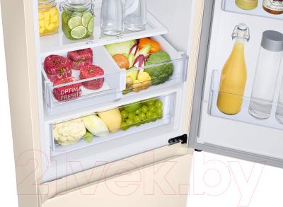 Холодильник с морозильником Samsung RB36T604FEL/WT