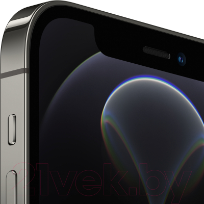 Смартфон Apple iPhone 12 Pro 256GB / MGMP3 (графитовый)