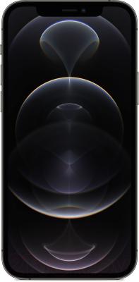 Смартфон Apple iPhone 12 Pro 512GB / MGMU3 (графитовый)