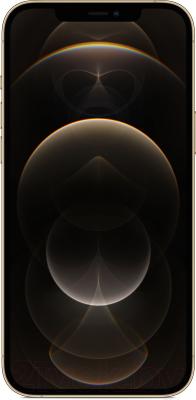Смартфон Apple iPhone 12 Pro Max 128GB / MGD93 (золото)