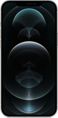 Смартфон Apple iPhone 12 Pro Max 256GB / MGDD3 (серебристый)