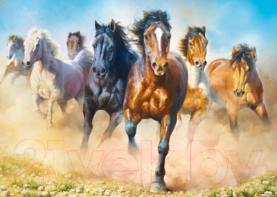 Пазл Trefl Табун лошадей / 27098