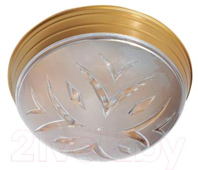 Потолочный светильник TDM SQ0328-0029