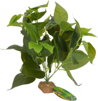 Декорация для террариума Lucky Reptile Golden Pothos / IF-33 -