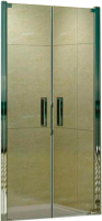 Душевая дверь WeltWasser WW600 600K2-80 -