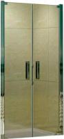 Душевая дверь WeltWasser WW600 600K2-100  -