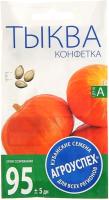 Семена Агро успех Тыква Конфетка / 54061 (2г) -