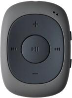 MP3-плеер Digma C2LG 4Gb / 367272 (серый) -