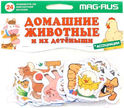 Развивающая игра Анданте Домашние животные и их детеныши / NF1013 мельник в мамина н андреева ю домашние животные и их детеныши
